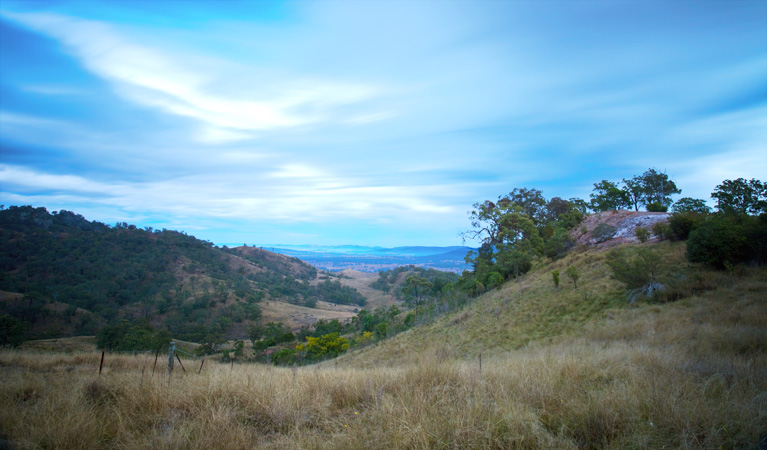 Burning Mountain Nature Reserve - Accommodation Gladstone