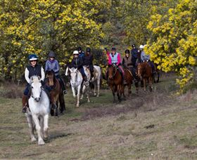 Burnelee Excursions on Horseback - Accommodation Gladstone