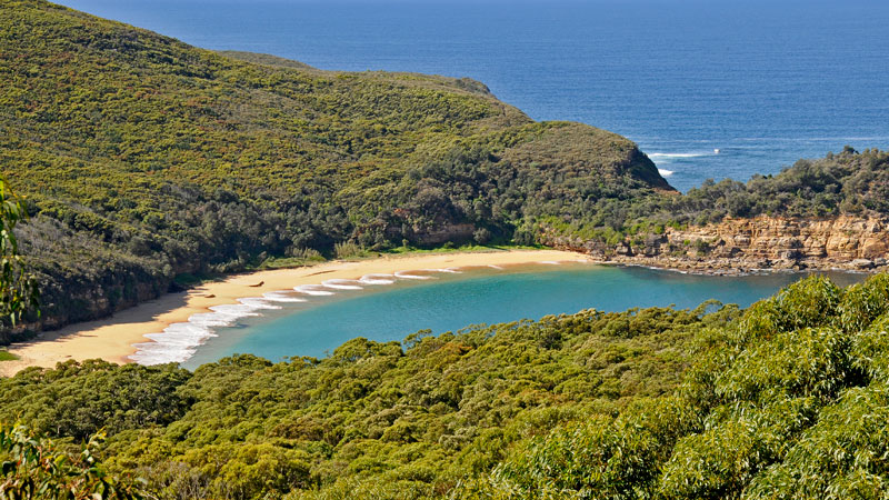 Bouddi National Park - Accommodation Gladstone