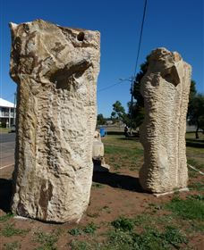 Fossilised Forrest Sculptures - Accommodation Gladstone
