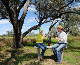 Restdown Wines and Walking Trail - Accommodation Gladstone