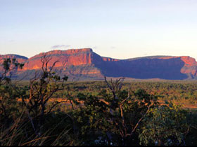 Blackdown Tableland National Park - Accommodation Gladstone