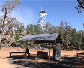 Pilliga Forest Lookout Tower - Accommodation Gladstone