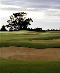 Black Bull Golf Club - Accommodation Gladstone