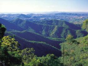 Kroombit Tops National Park - Accommodation Gladstone