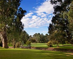 Commercial Golf Course - Accommodation Gladstone