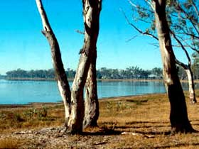Lake Broadwater Conservation Park - Accommodation Gladstone