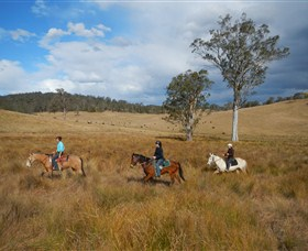 Chapman Valley Horse Riding - Accommodation Gladstone