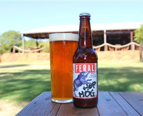 Feral Brewing Company - Accommodation Gladstone