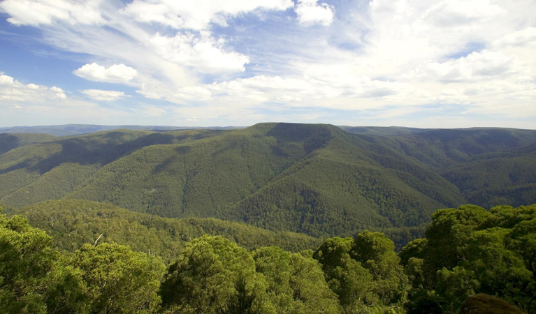 Barrington Tops National Park - Accommodation Gladstone