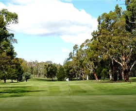 Cooma Golf Club - Accommodation Gladstone