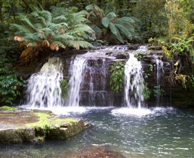 Barrington Tops National Park Walks - Accommodation Gladstone