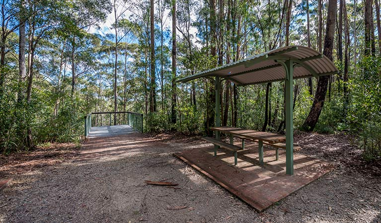 Big Nellie lookout and picnic area - Accommodation Gladstone