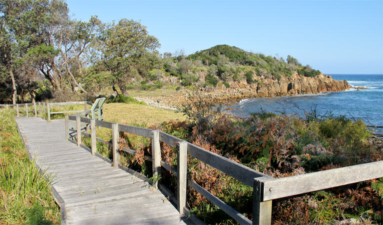 Mimosa Rocks walking track - Accommodation Gladstone