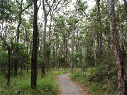 Caboolture Regional Environment Education Centre - Walking Trails - Accommodation Gladstone