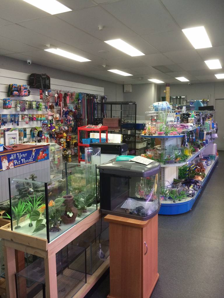 Nambour Pet Shop - Accommodation Gladstone