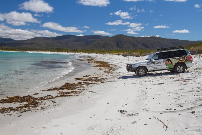 4X4 and Lunch Half Day Bicheno Coastal Mountain - Accommodation Gladstone