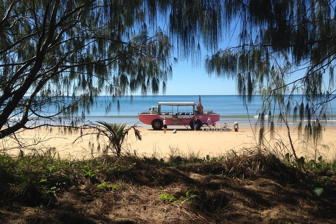 1770 Coastline Tour by LARC Amphibious Vehicle Including Picnic Lunch - Accommodation Gladstone