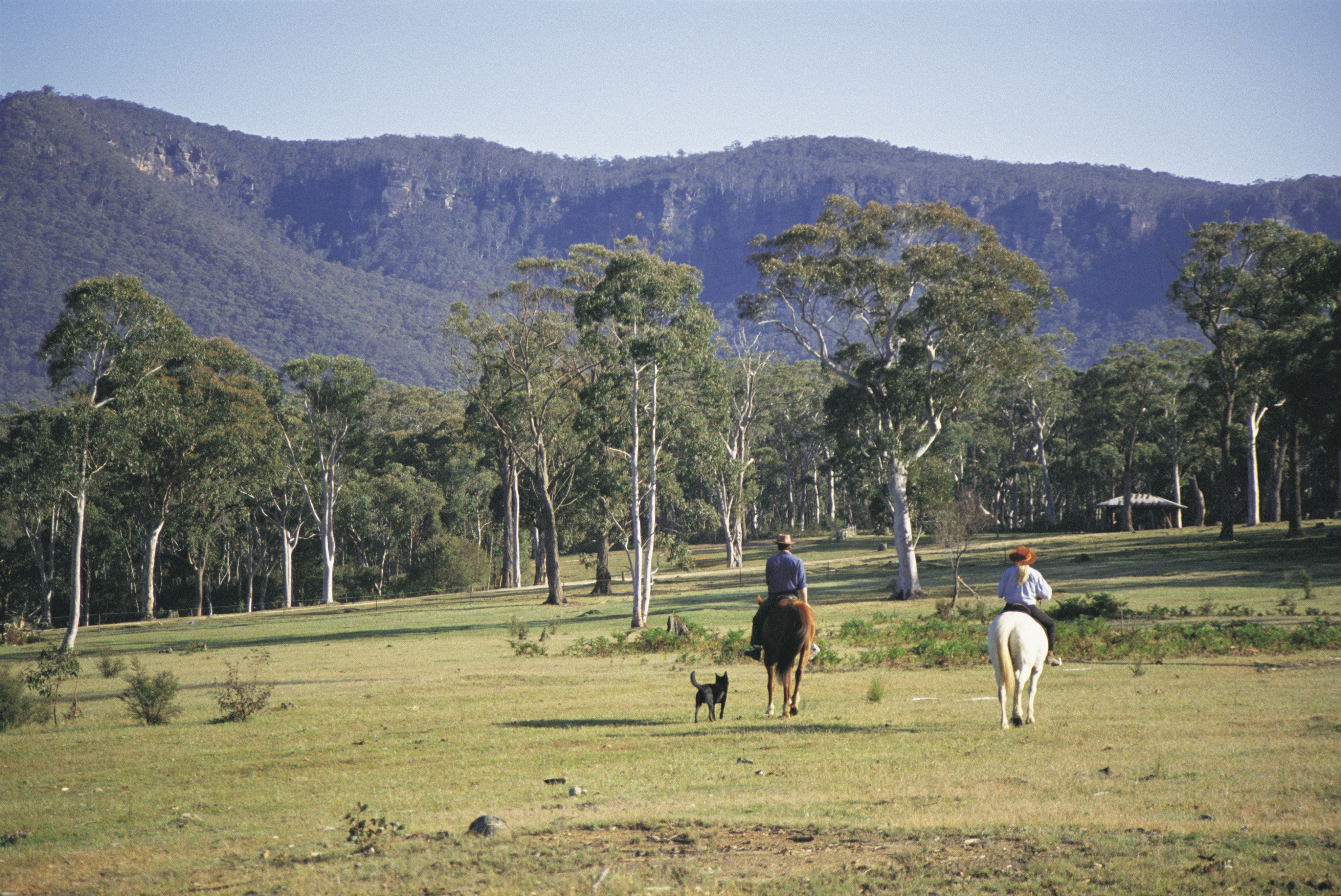 Megalong Valley - Accommodation Gladstone