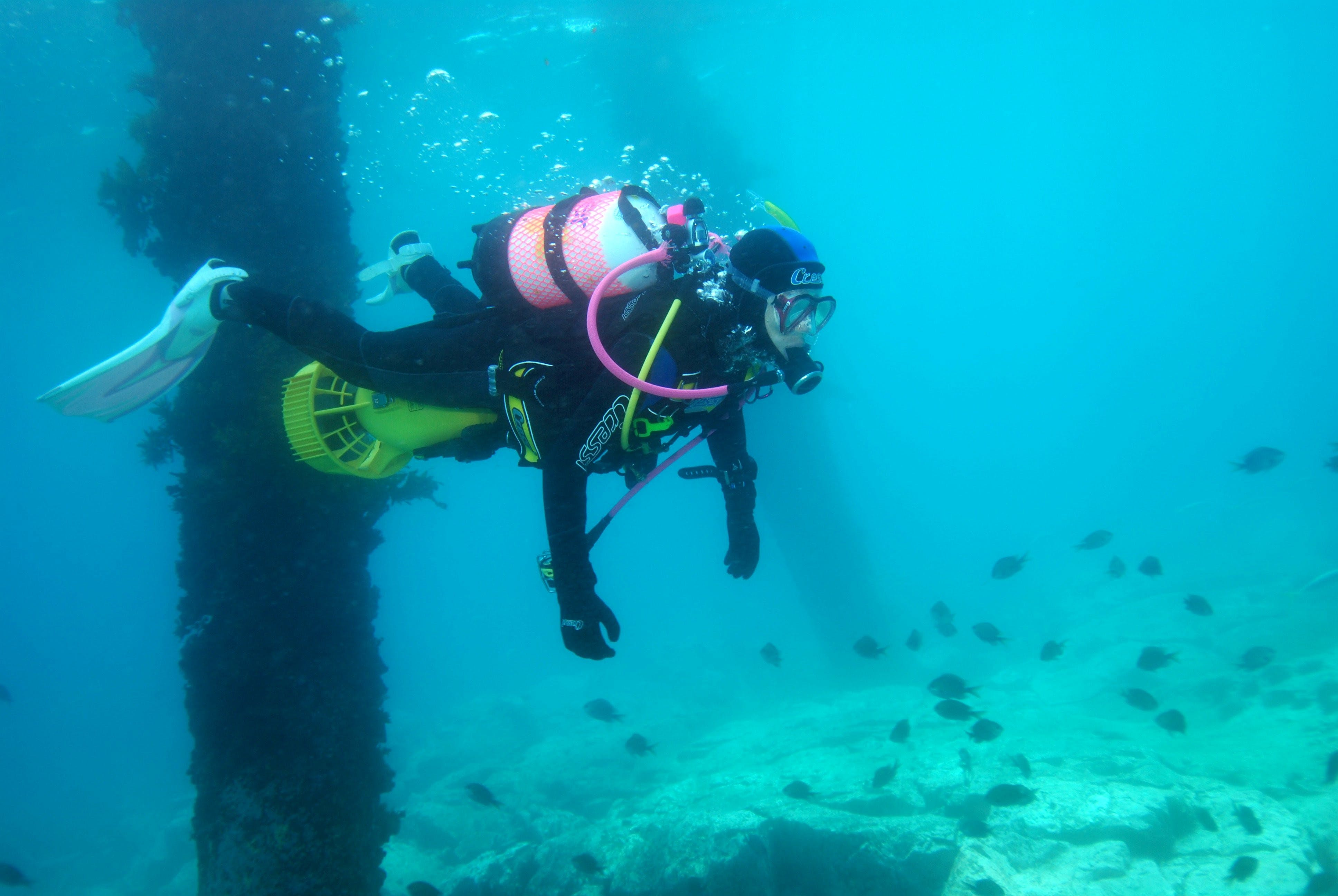 Shellharbour Scuba  and Photography Centre - Accommodation Gladstone
