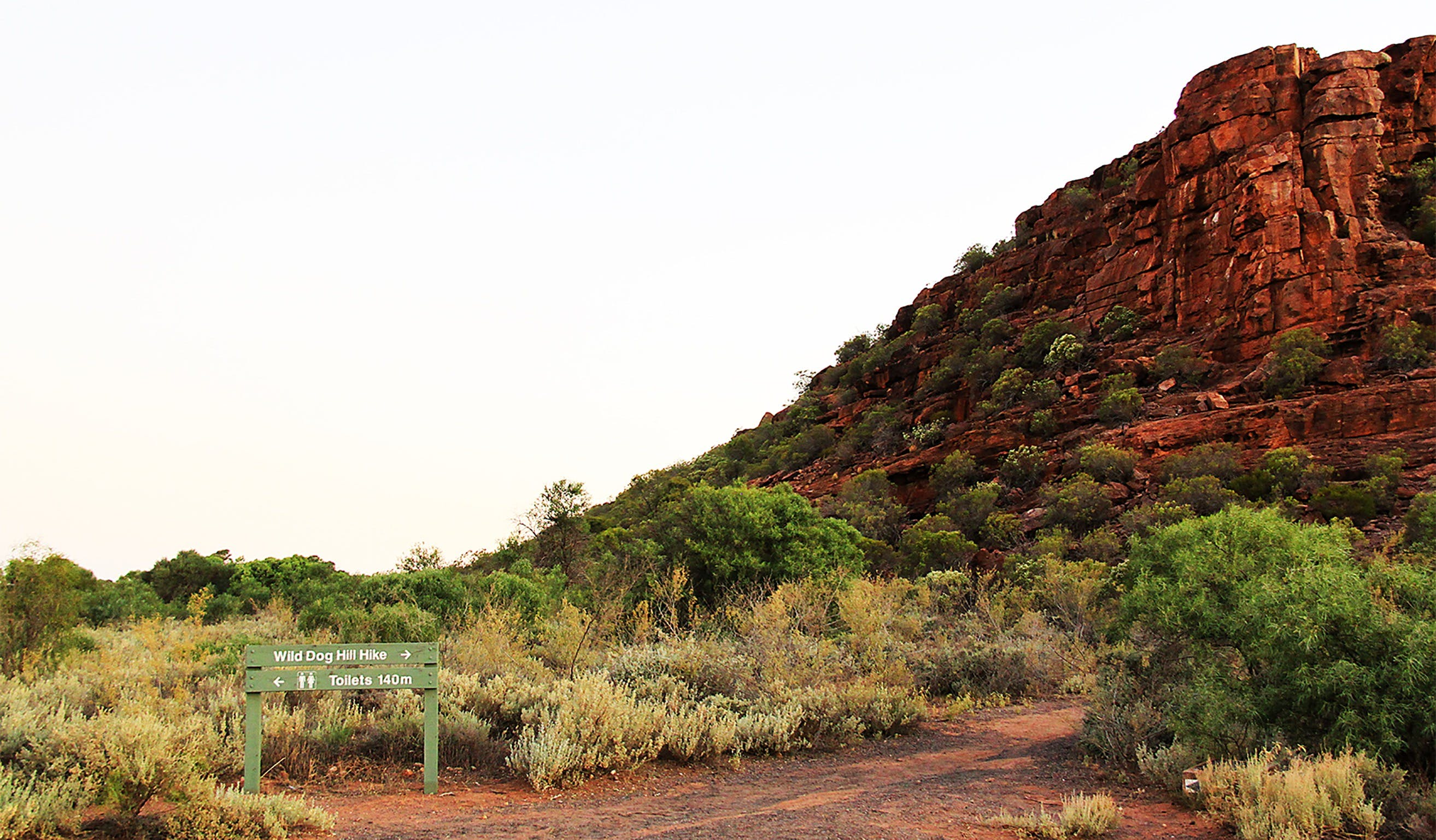 Whyalla Conservation Park - Accommodation Gladstone