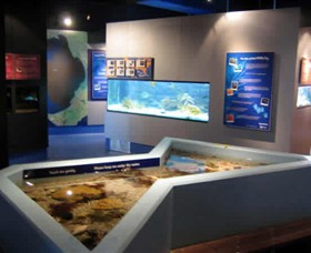 Marine and Freshwater Discovery Centre - Accommodation Gladstone