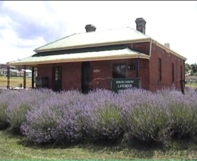 Lavender House in Railway Park - Accommodation Gladstone