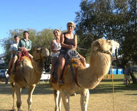 Calamunnda Camel Farm - Accommodation Gladstone