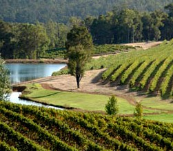 Brookhampton Estate Vineyard - Accommodation Gladstone