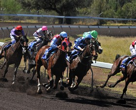 Alice Springs Turf Club - Accommodation Gladstone