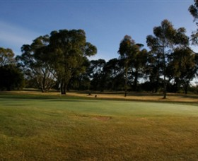 Winchelsea Golf Club - Accommodation Gladstone