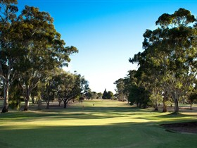 Loxton Golf Club - Accommodation Gladstone