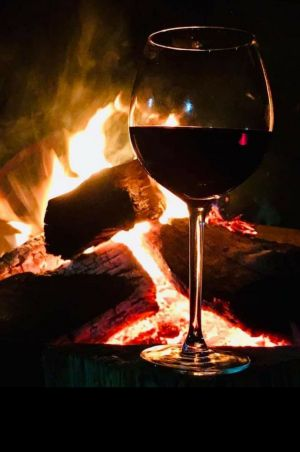 Book your Fire Pit at The Oriana - Accommodation Gladstone
