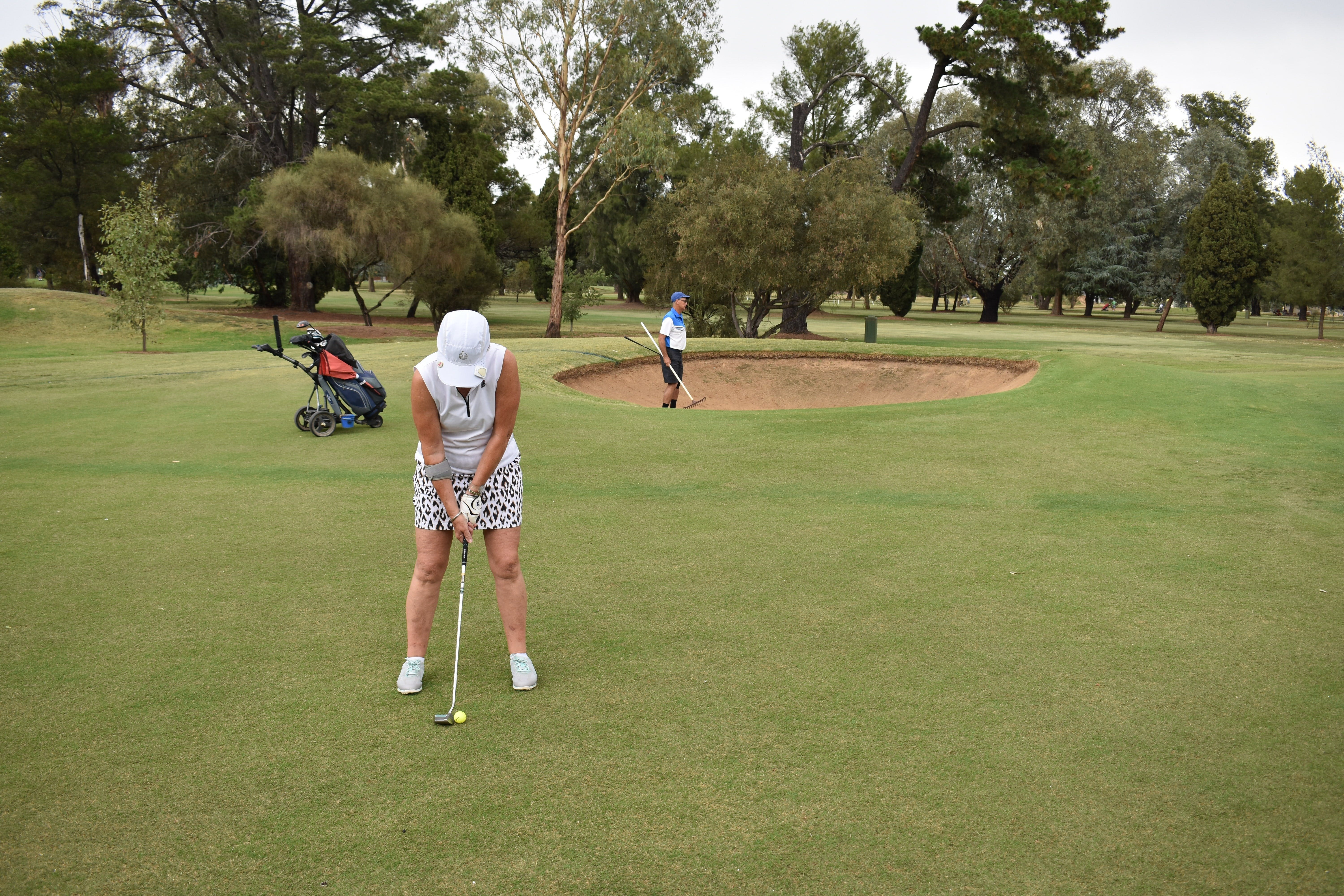 Nine and Dine Golf and Buffet Dinner with Seafood - Accommodation Gladstone