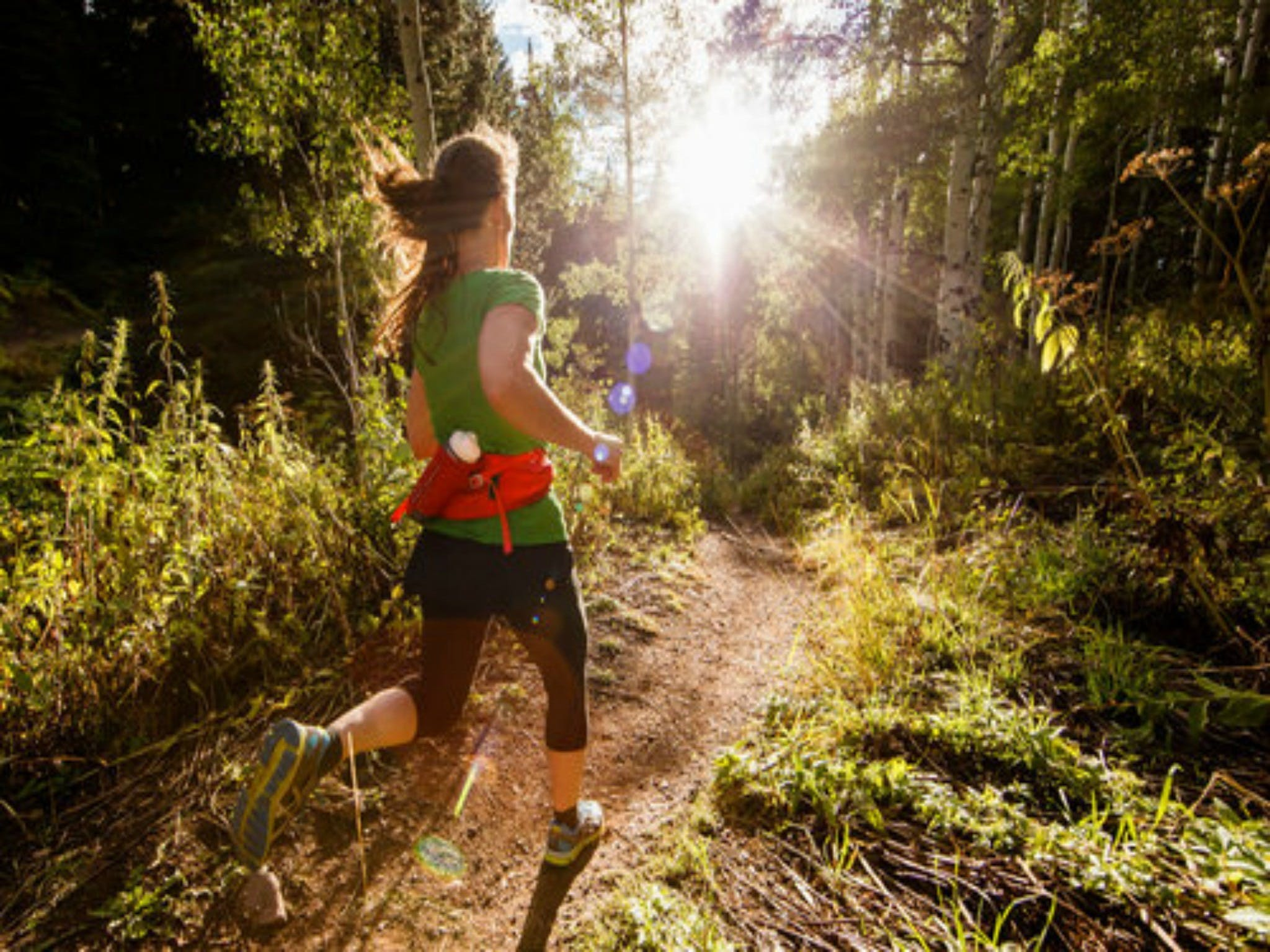 Run Dungog - Accommodation Gladstone
