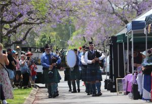Celtic Festival of Queensland - Accommodation Gladstone