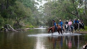 The Man From Snowy River Bush Festival - Accommodation Gladstone