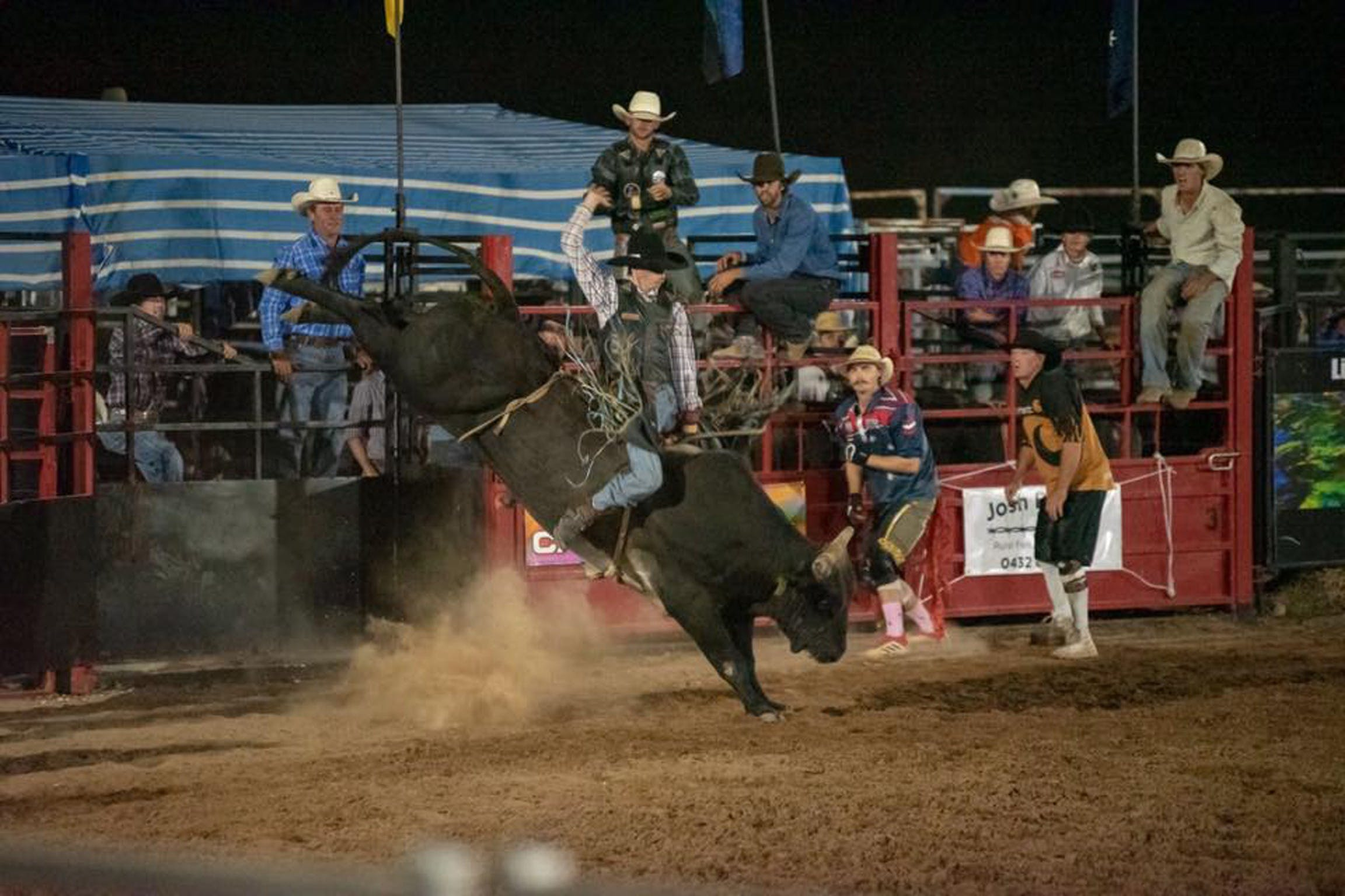 Black Opal Bull and Bronc Ride - Accommodation Gladstone