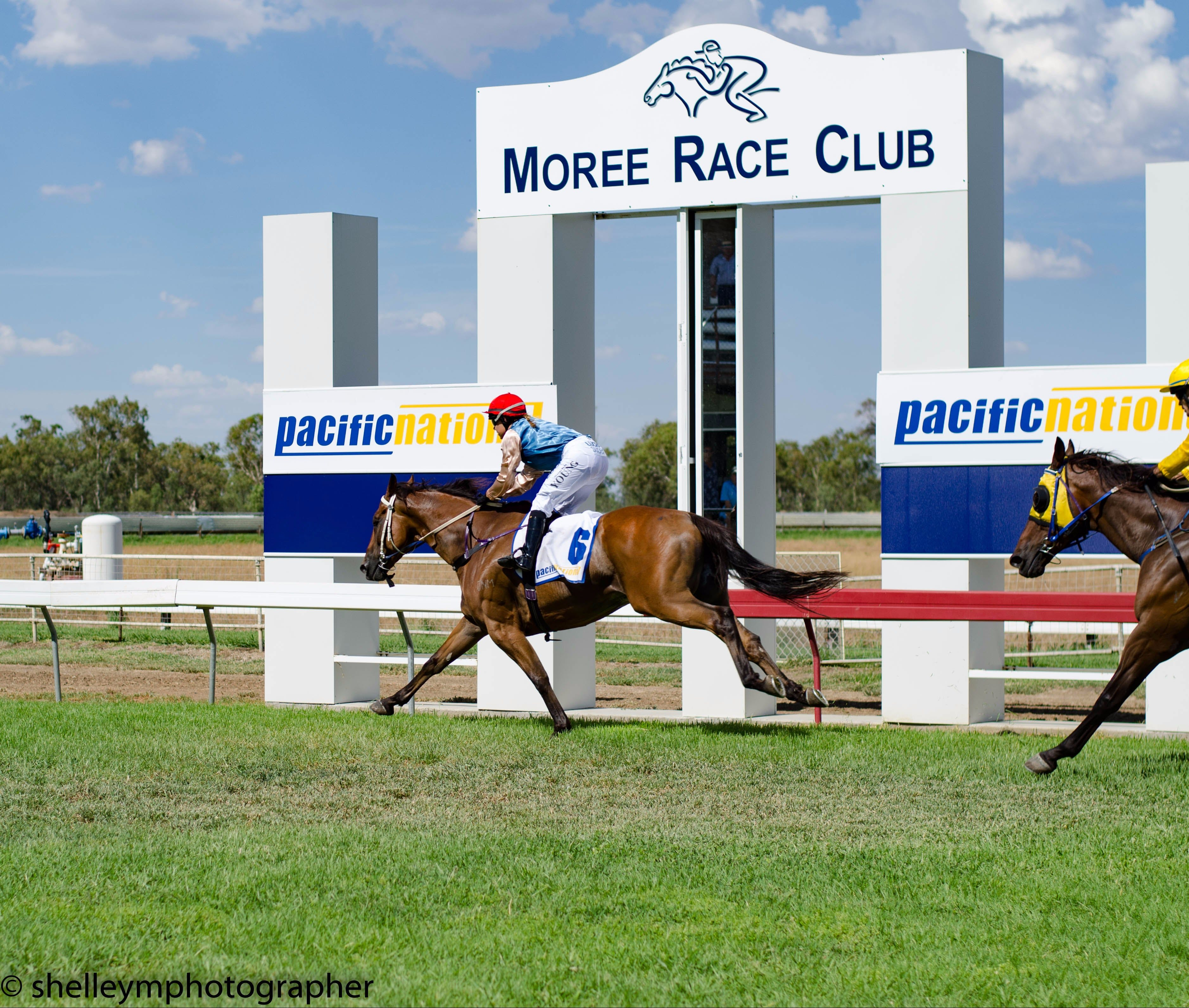 Moree Race Club TAB Race Day - Accommodation Gladstone