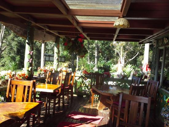 Suzannes's Hideaway Cafe - Accommodation Gladstone