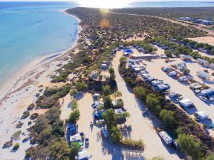 Denham Seaside Caravan Park - Accommodation Gladstone
