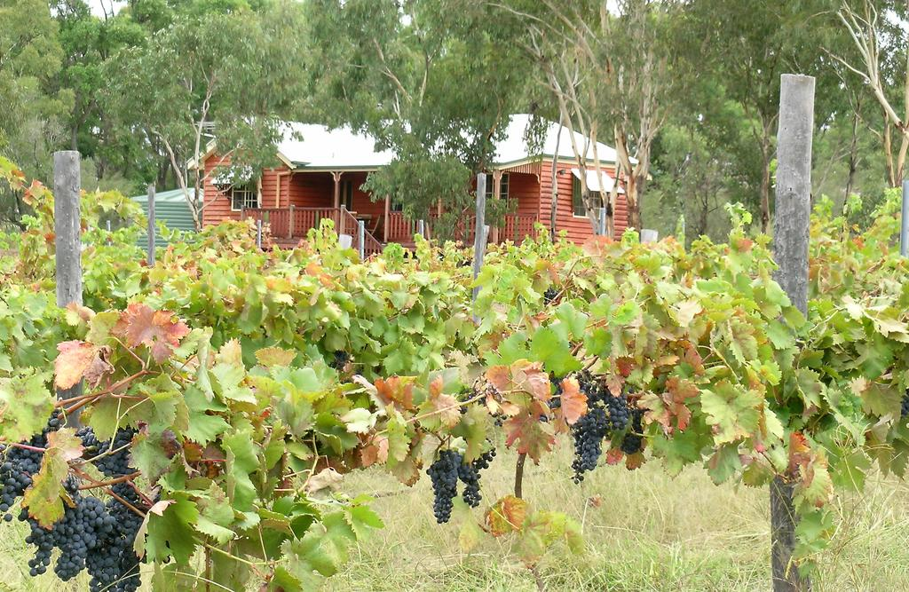 Fergies Hill Spa Cottage  Granite Ridge Wines - Accommodation Gladstone