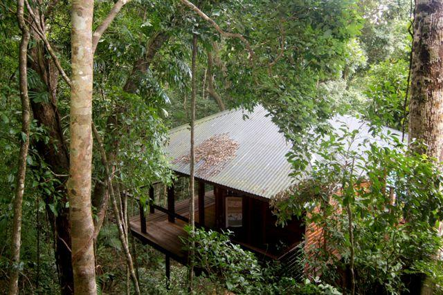 Cairns Reef  Rainforest BB - Accommodation Gladstone